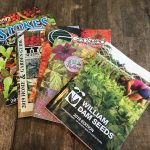 Seed Catalogues for home gardeners