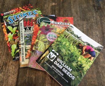 How to Easily Read a Seed Catalogue Without Getting Confused