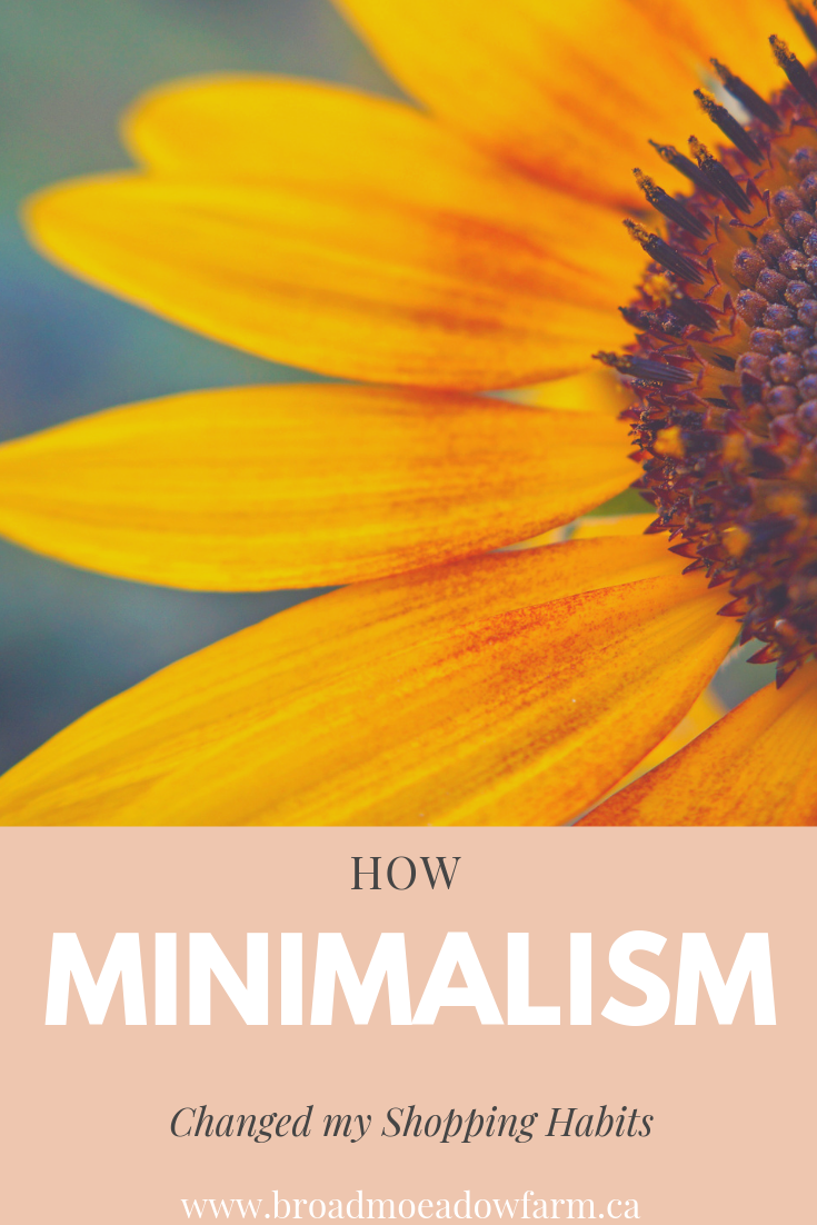 minimalism changes habits, how I shop different now that I am more minimalist