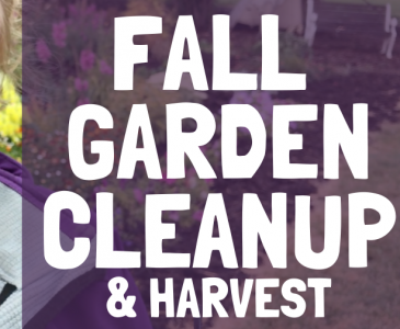 Fall Garden Clean-Up